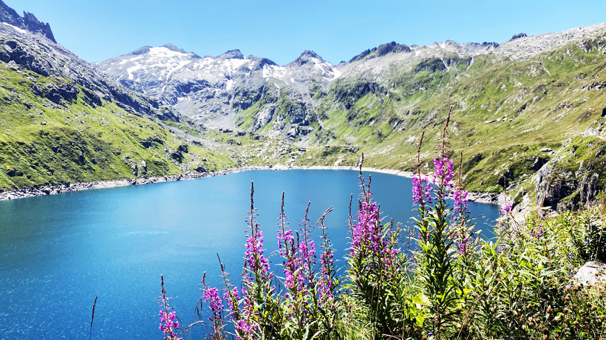 Swisspecial - Private Guiding in Switzerland - Blog - On rugged paths to the super panorama - Title