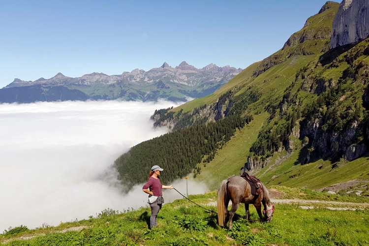 Swisspecial - Private Guiding in Switzerland - Trips - Mountain Horseback Ride 3