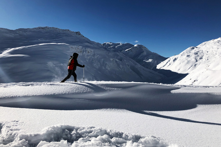 Swisspecial - Private Guiding in Switzerland - Trips - Winter Wonderland 2
